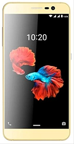 'ZTE Blade A910 Dual SIM 4 G 16 GB Gold Smartphone (5.5, 16 GB, 13 MP, Android 6.0, Golden)